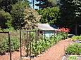 Farm Shot 2006