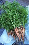 Carrots 2006