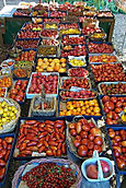 Packed full of Tomatoes