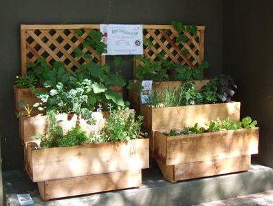 Container garden in tiers