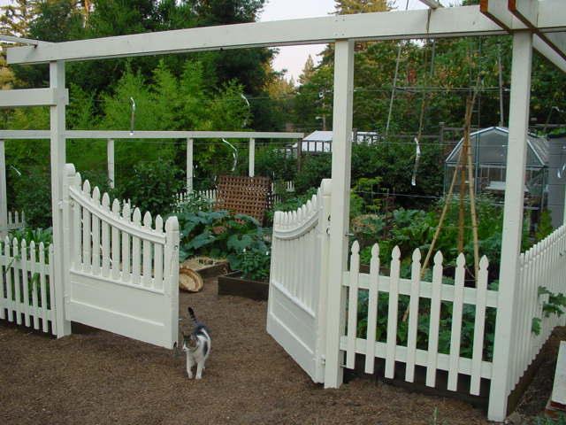 V garden after