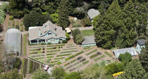 Aerial view of Love Apple Farm