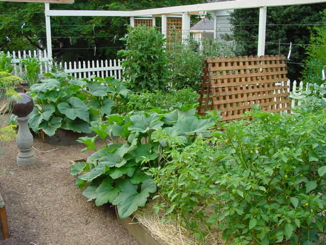 V garden after2