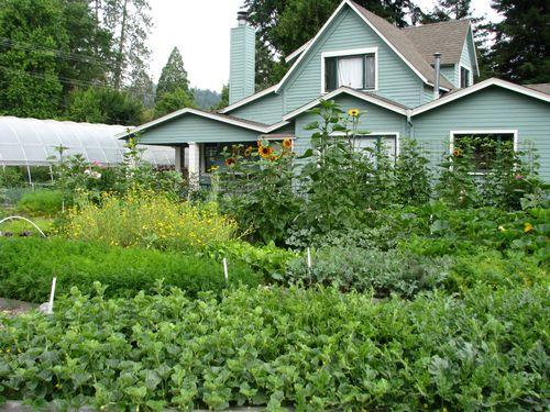 Garden2on6.28.2010