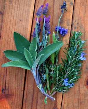 Sage Rosemary and Lavender