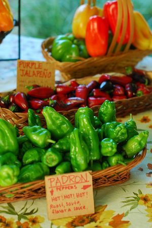 Peppers on the Farmstand