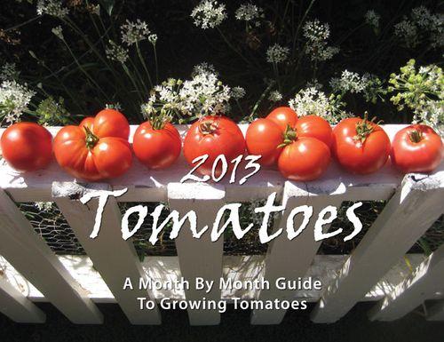 2013-Calendar-Cover