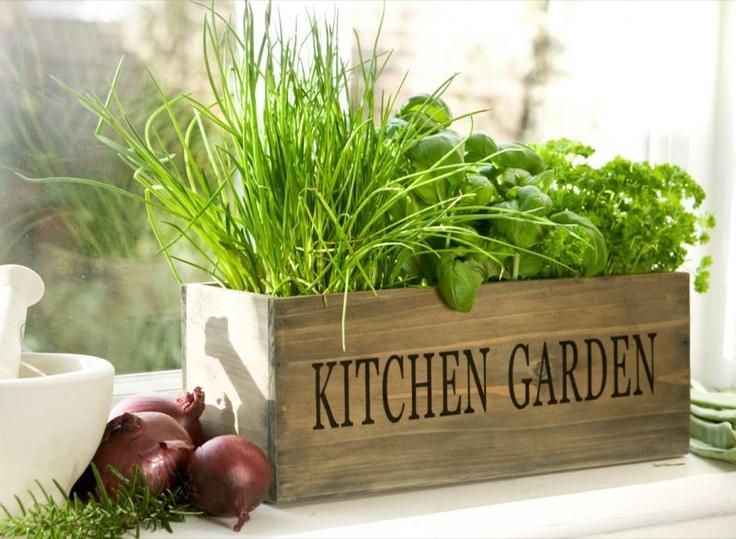 The Kitchen Garden - Garden Design Ideas