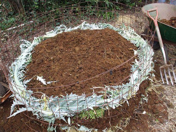 Love Apple Farms: Workshop: Compost, Vermiculture & Soil ...