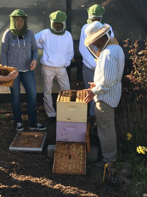 Bee class by Kathleen Whitmor 3.11.17