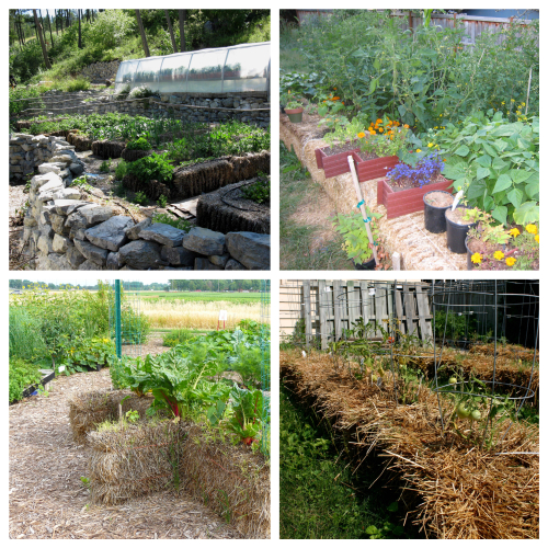 Picstitch Straw Bale Gardening class