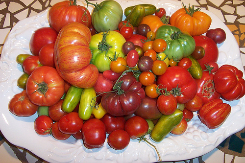 Beautiful Bowl of Tomatoes
