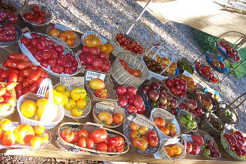 Tomato Stand 2004