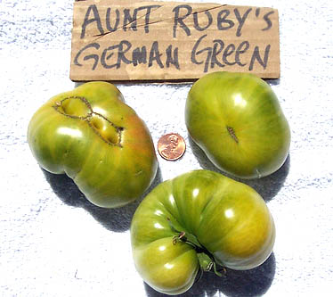 Aunt_rubys_german_green_beefsteak